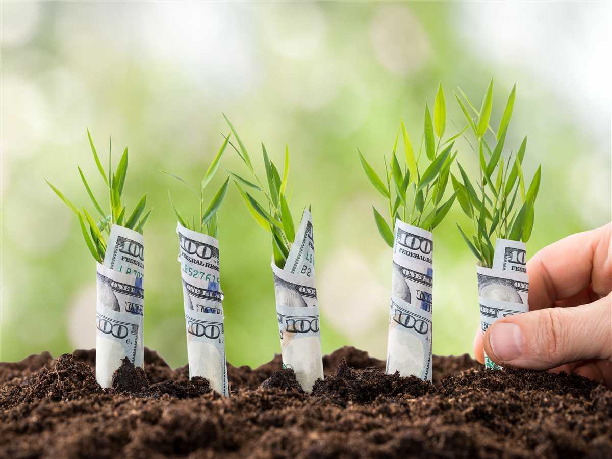 Esg: la sostenibilità per investire nel futuro